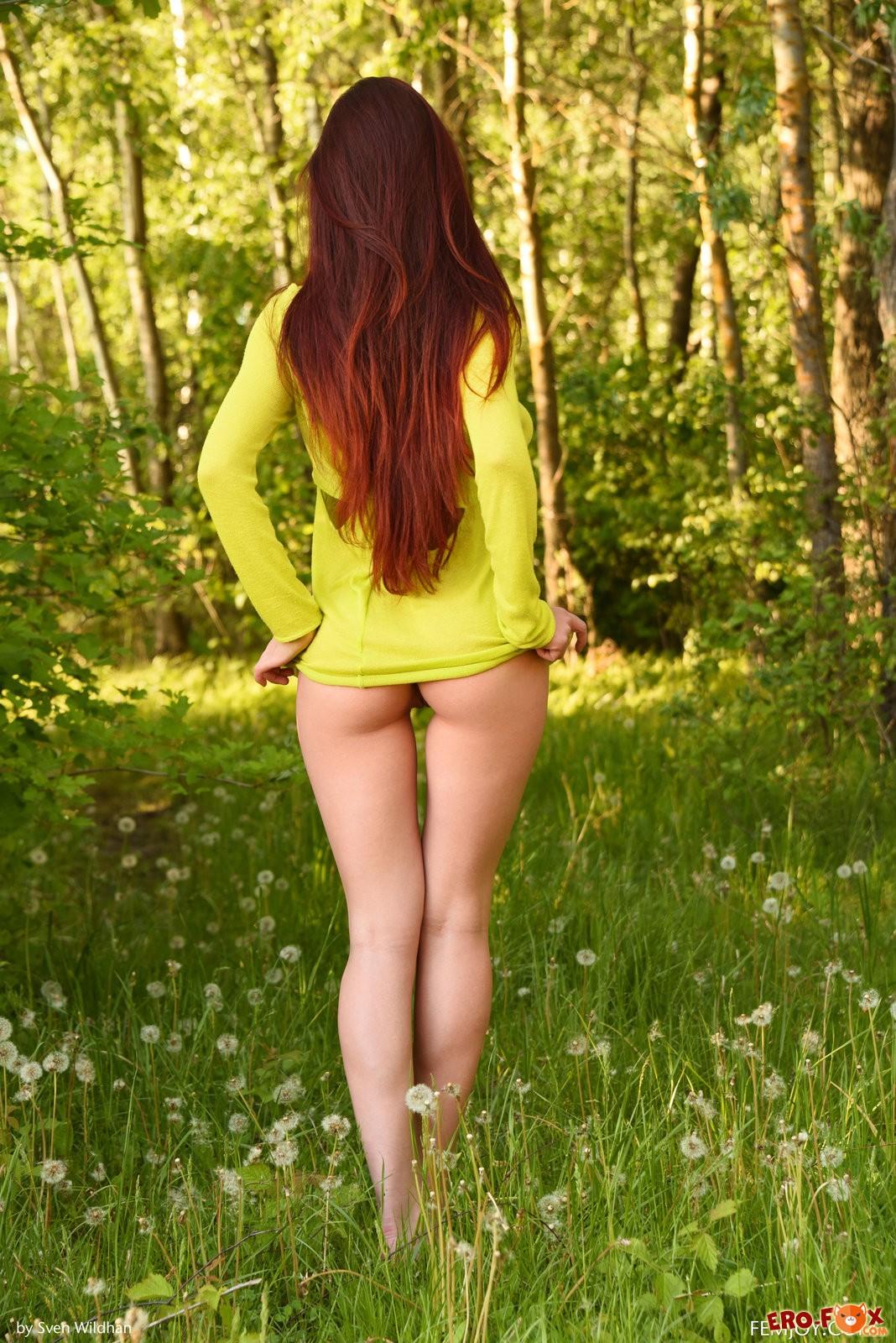 Голая на поляне, рыженькая красотка в лесу .