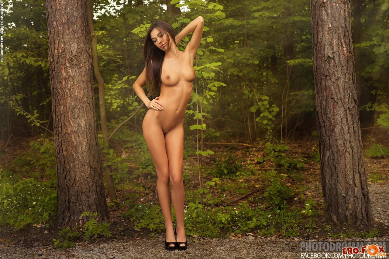 Голая красотка с упругими сиськами в лесу